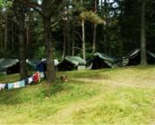 Namioty kadry